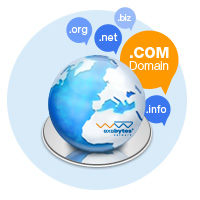 Include Domain: .COM / .NET / .INFO / .ORG / .BIZ